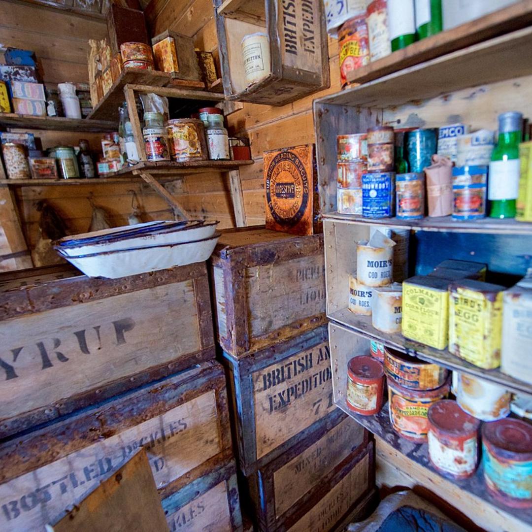 The Antarctic Diet: How Food Fuels Science