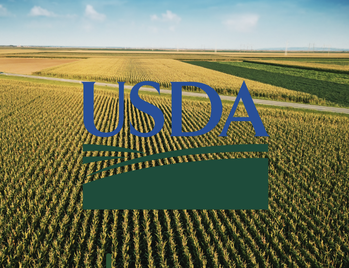 Who Needs USDA Certification and Why Is It Important?